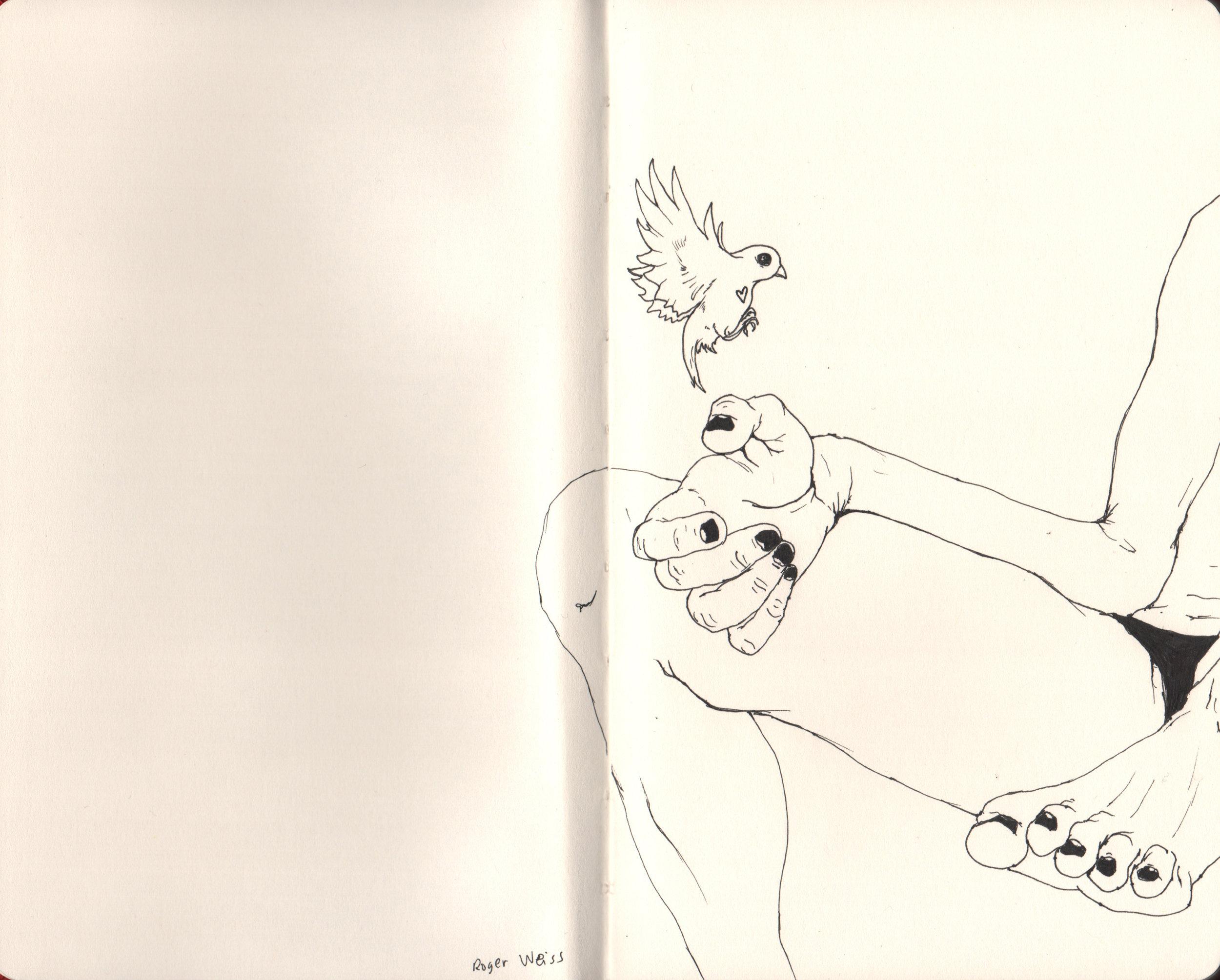 birdHeart.jpg