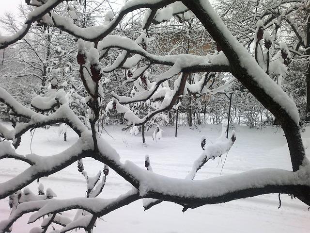 Hello, February in Minnesota.