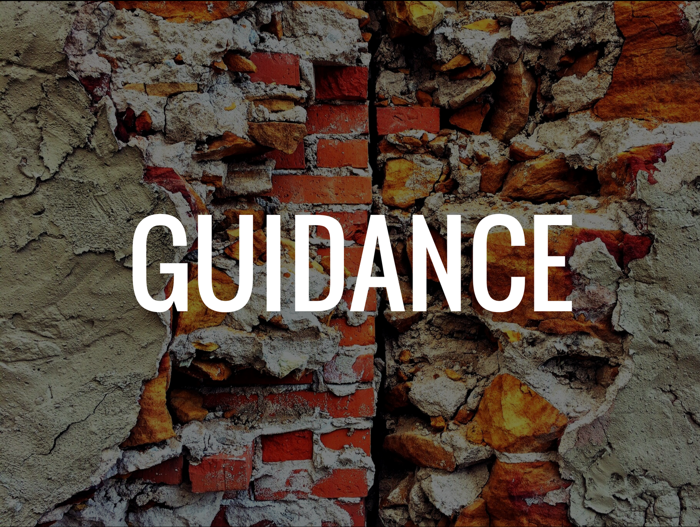guidancecategory