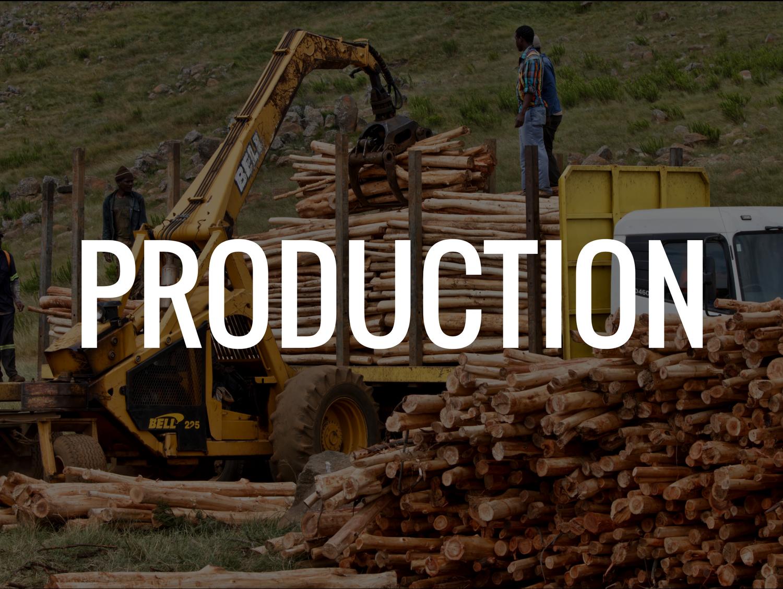 productioncategory