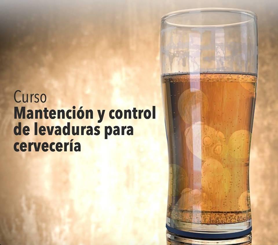 Mantención y control de levaduras en cervecería.jpg