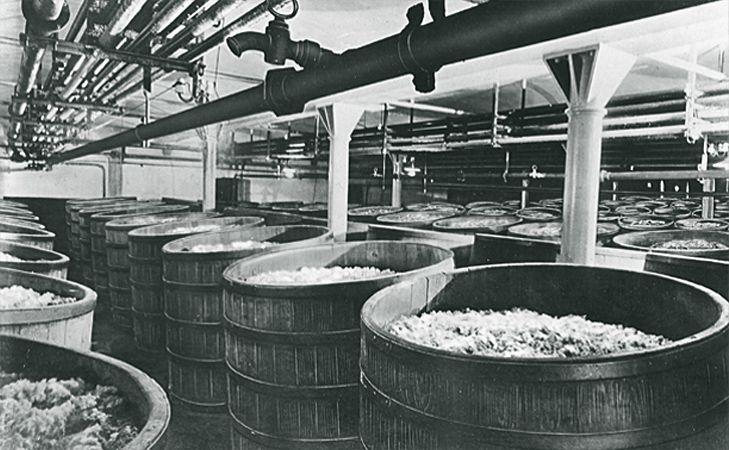 tradición cervecera