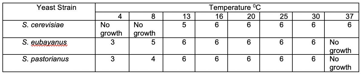 La tabla 1 muestra el crecimiento de diferentes cepas de levadura a diferentes temperaturas.