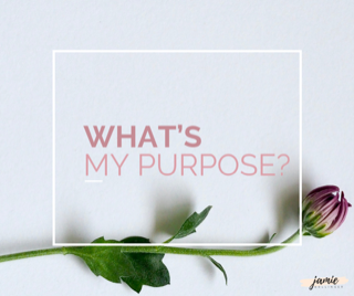 Whats my Purpose_blog pic.PNG