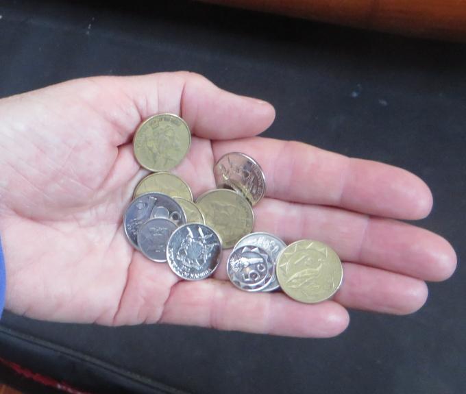 six namibian bucks left