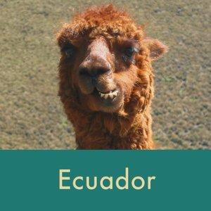 ecuador+thumb.jpg