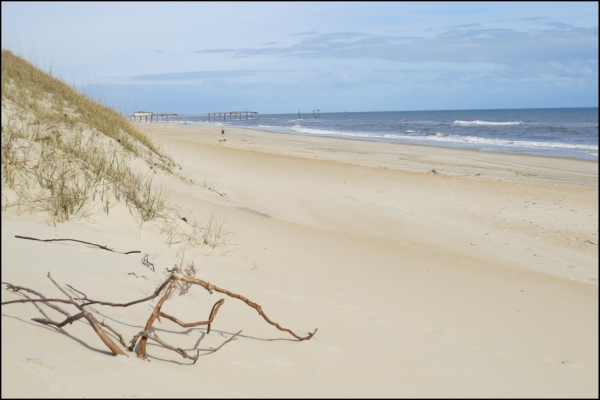 We climbed over grassy sand dunes for a view of the Atlantic