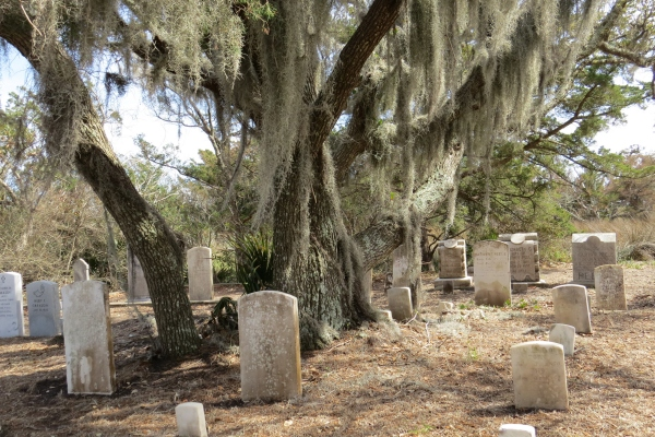 The Old Man's Beard (Spanish moss) draped on the live oak lent an eerie air to the graveyard.