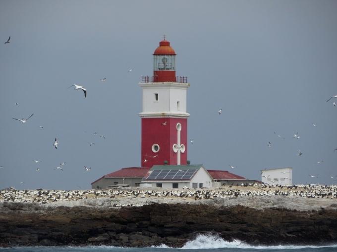 Bird Island Light - South Africa