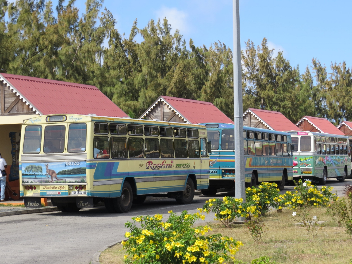 The buses are old and colorful.