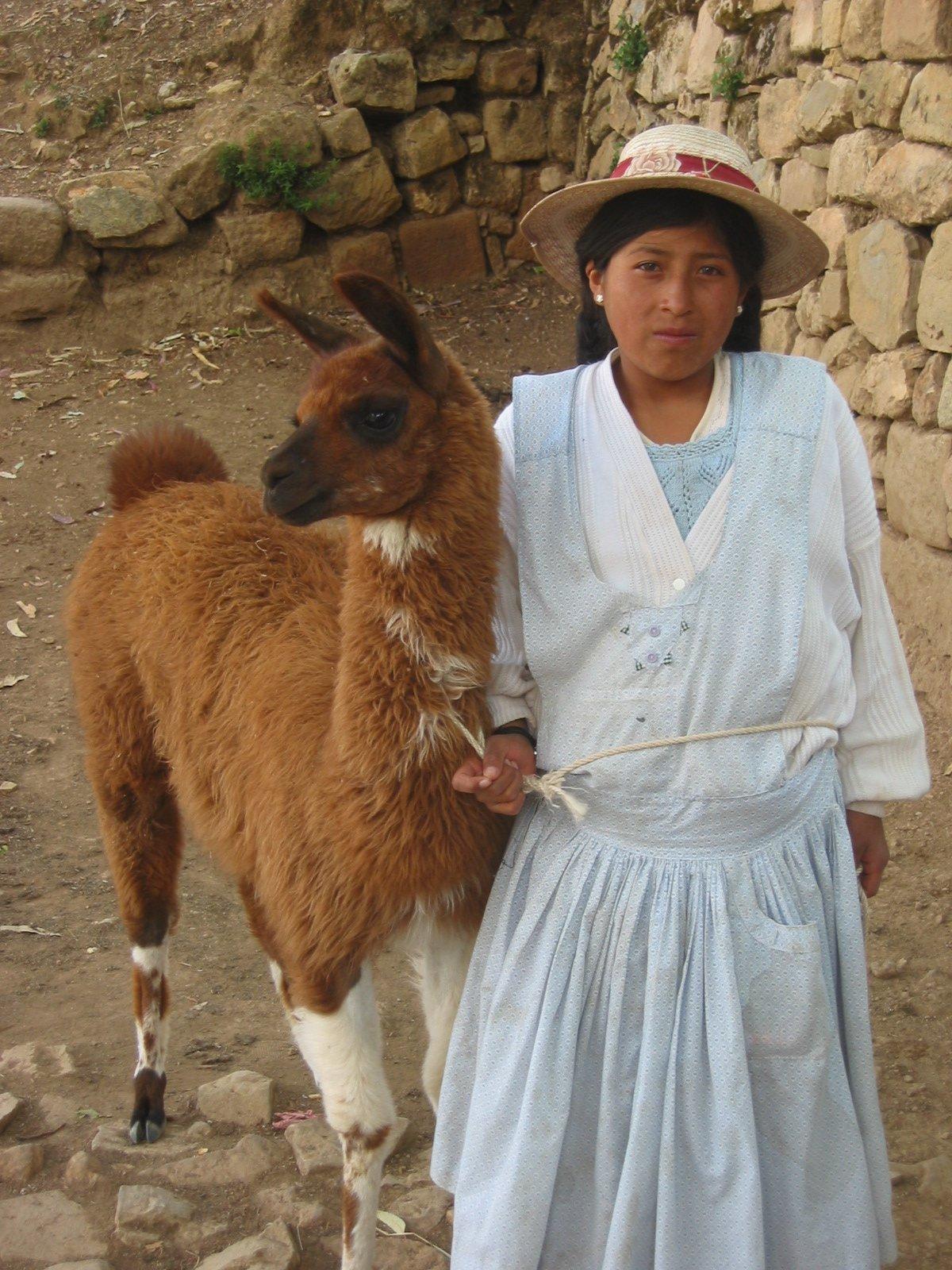 Young Aymaran girl and her alpaca