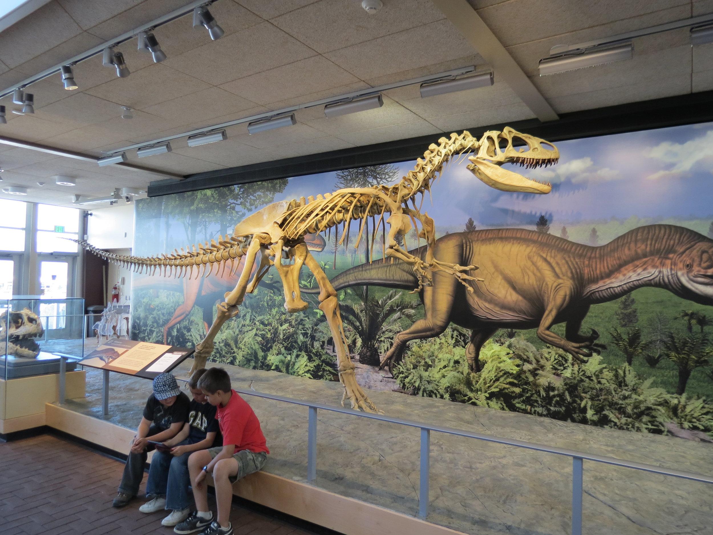 Dinosaur National Monument  - Utah/Colorado - 2012