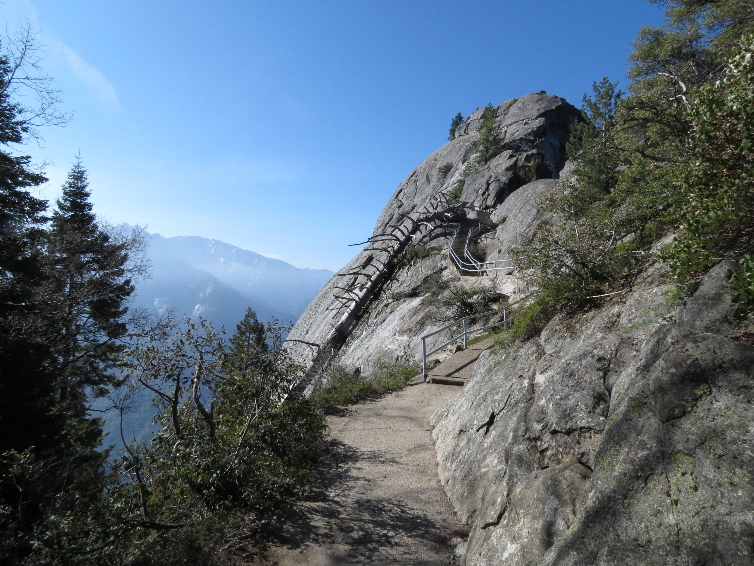 Sequoia National Park  - California - 2012