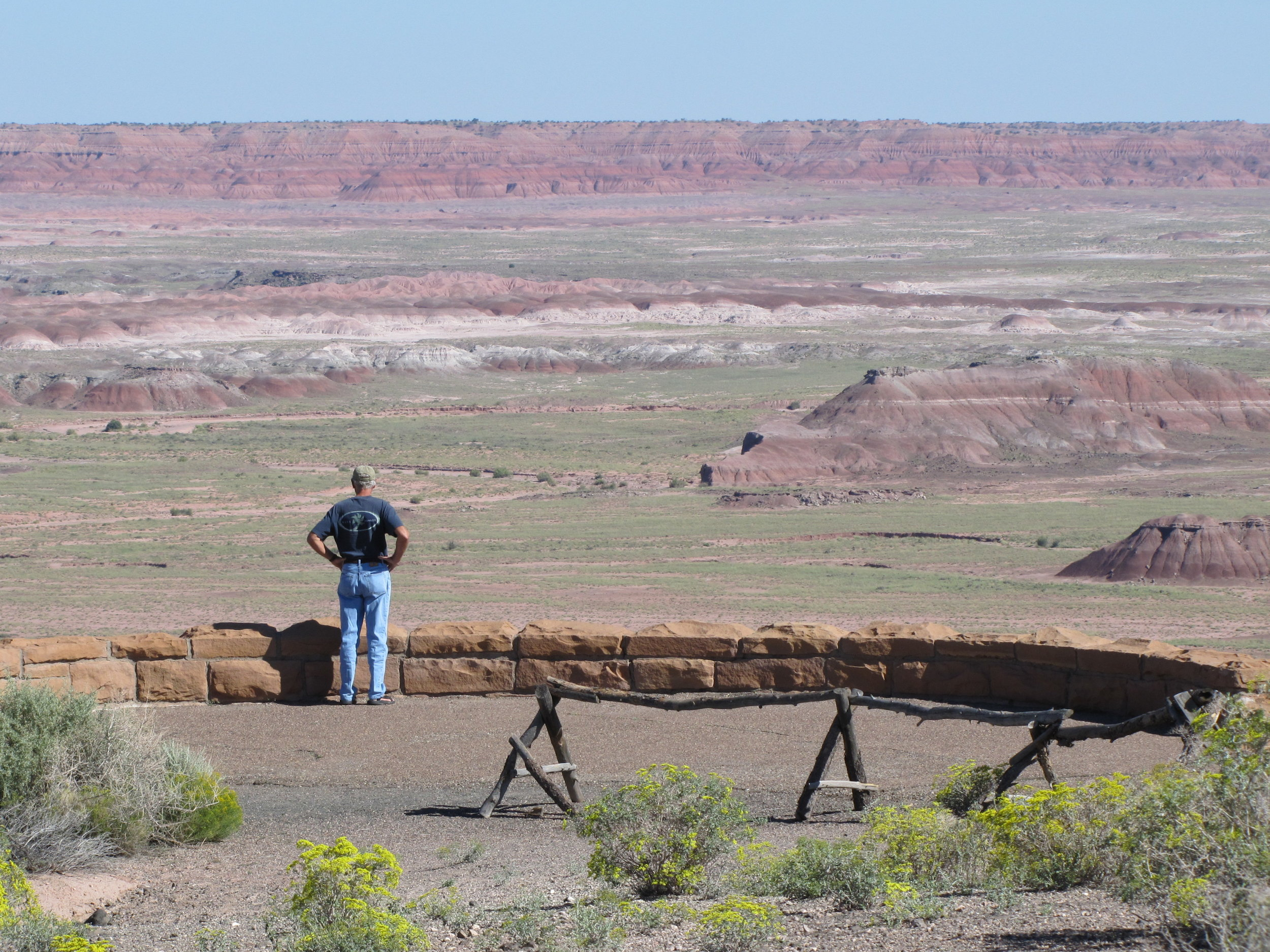 Petrified forest national park  - painted desert view - arizona - 2010