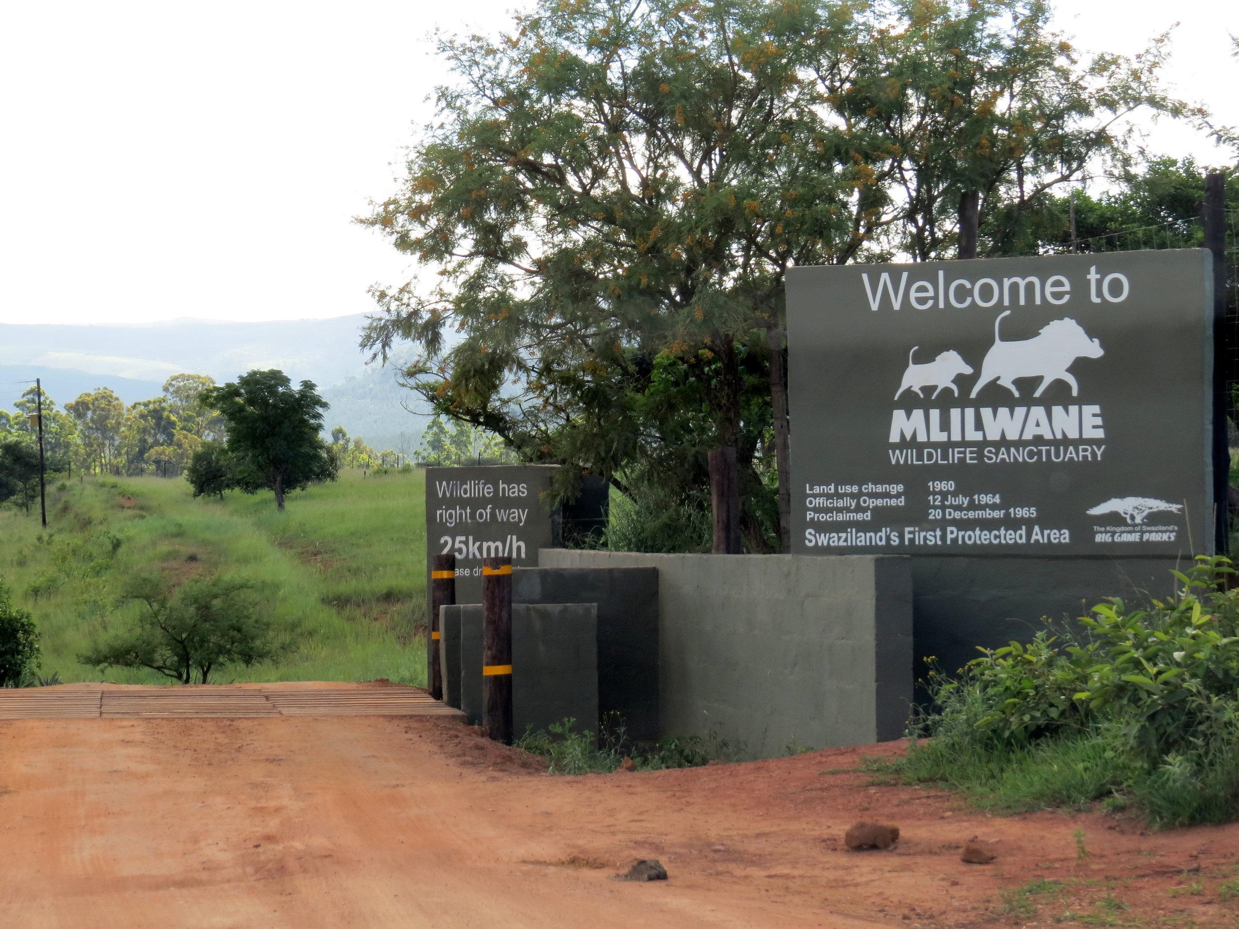 Welcome to Mlilwane