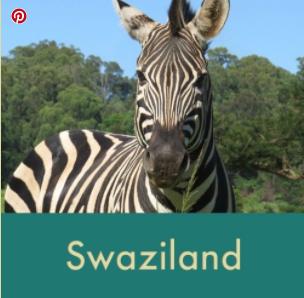 Swazi thumbnail.png