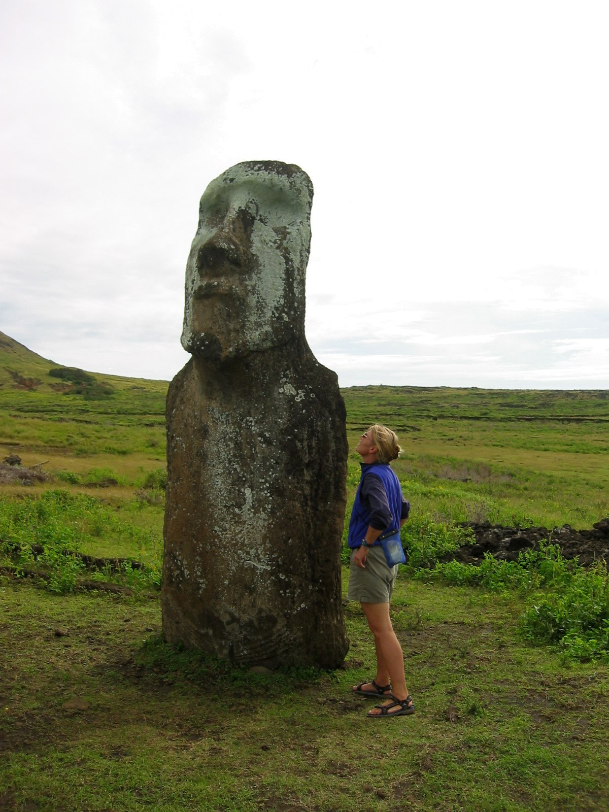 What do you say to a moai?   WOW!