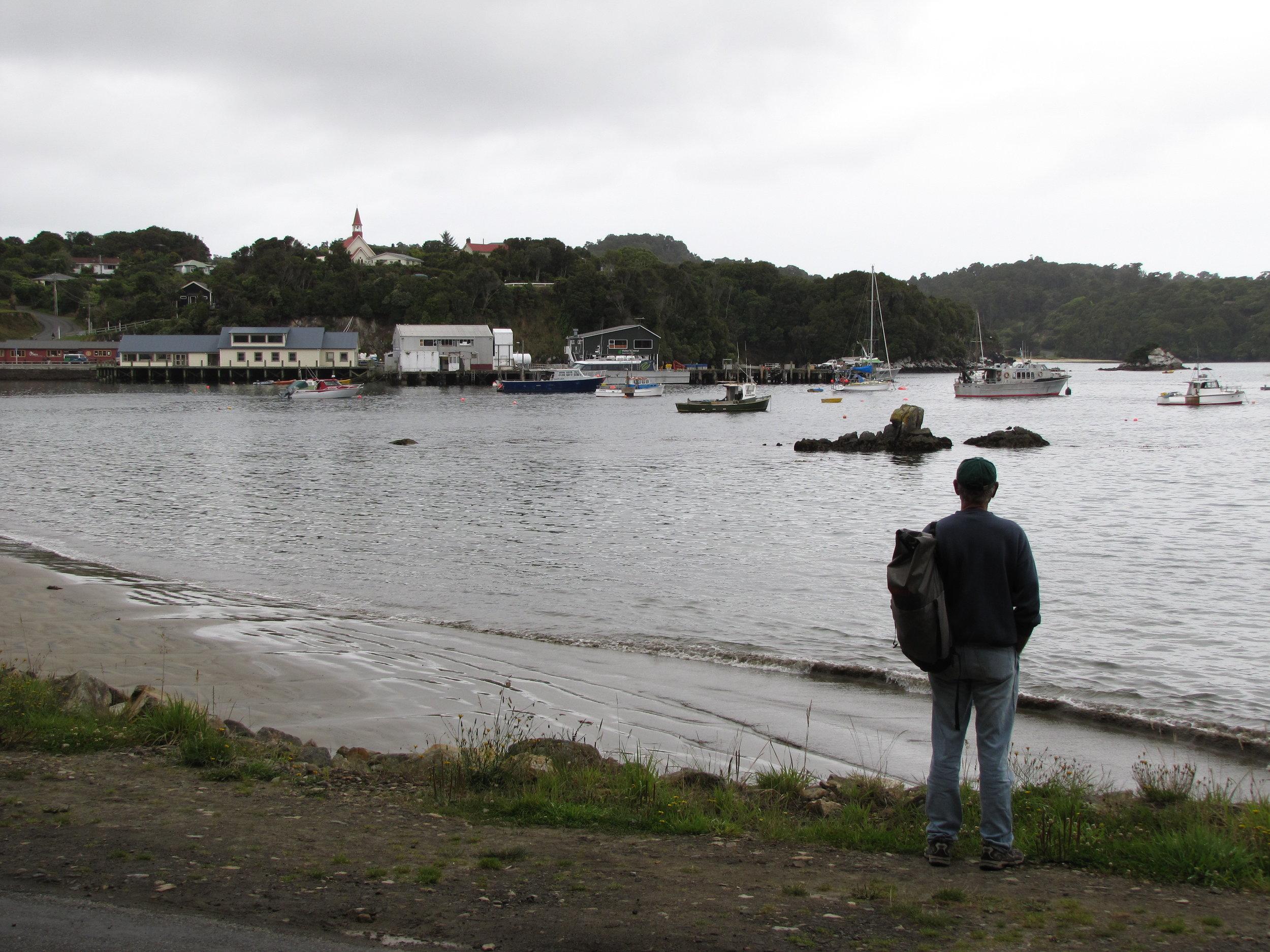 The harbour in Oban, Stewart Island