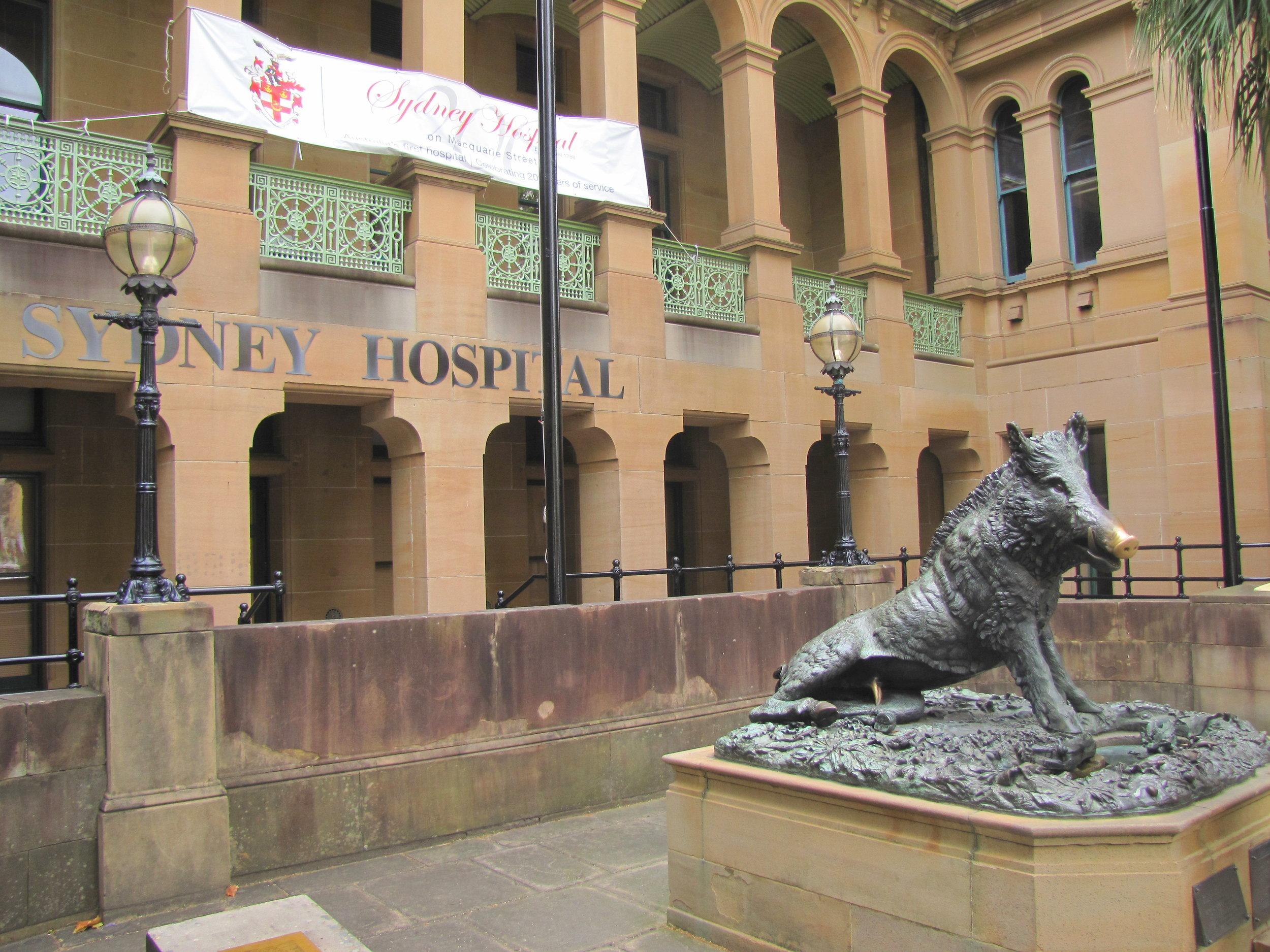 Il Porcellino, a landmark at the Sydney Hospital
