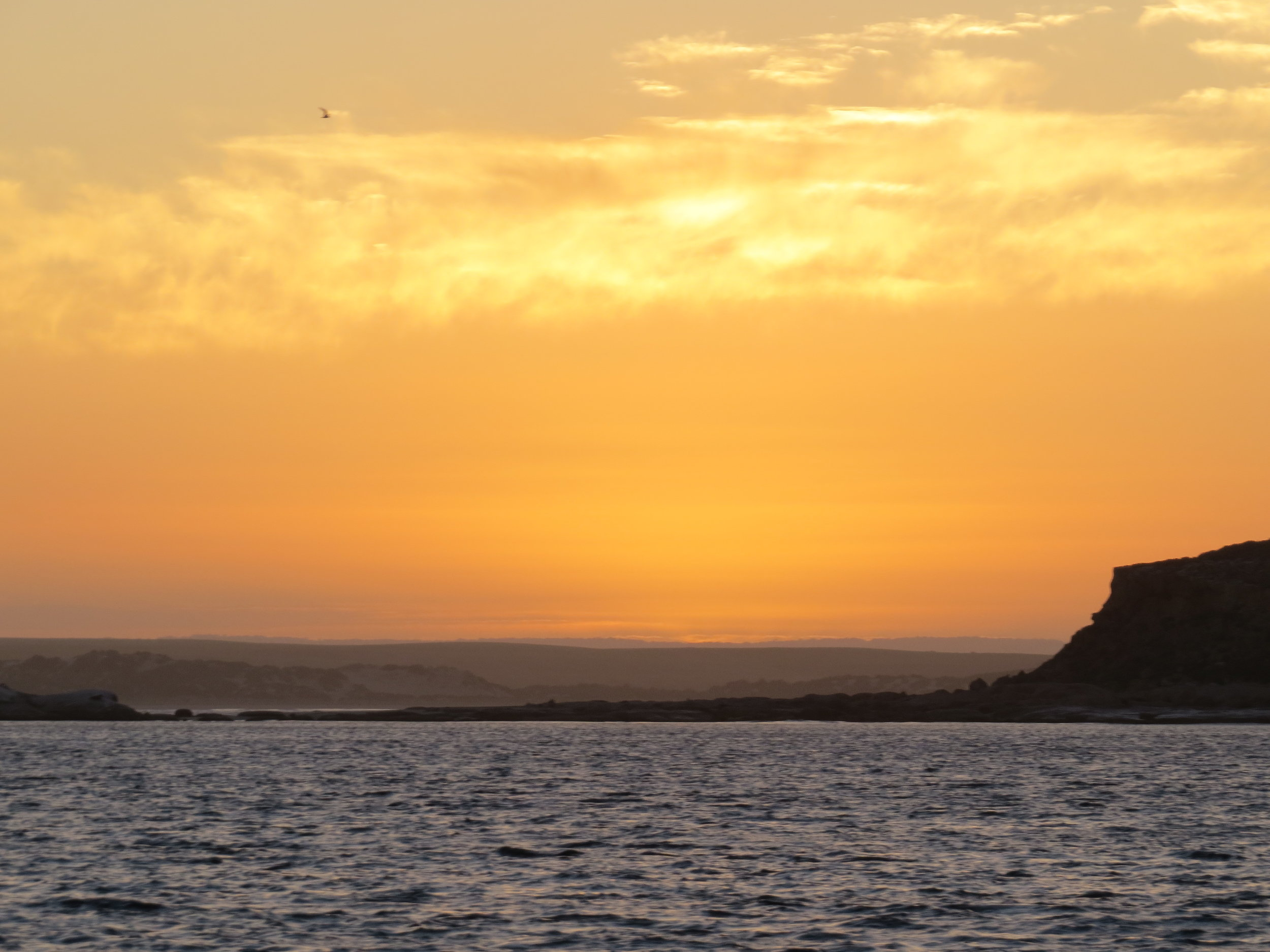 Sunrise at Waldegrave Island en route from Port Lincoln to Streaky Bay