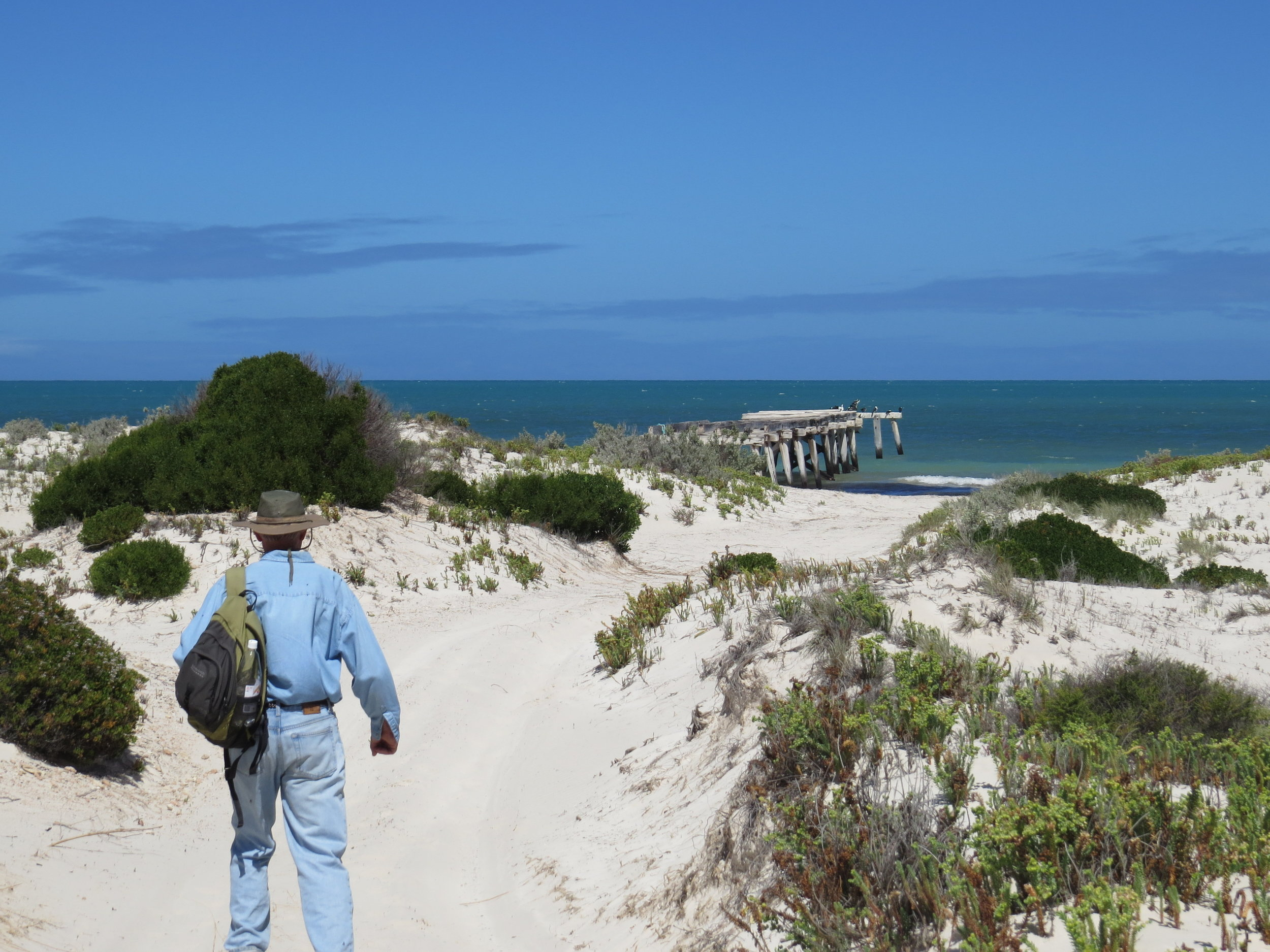 Heading back to Cups after a long  walk to Eucla .