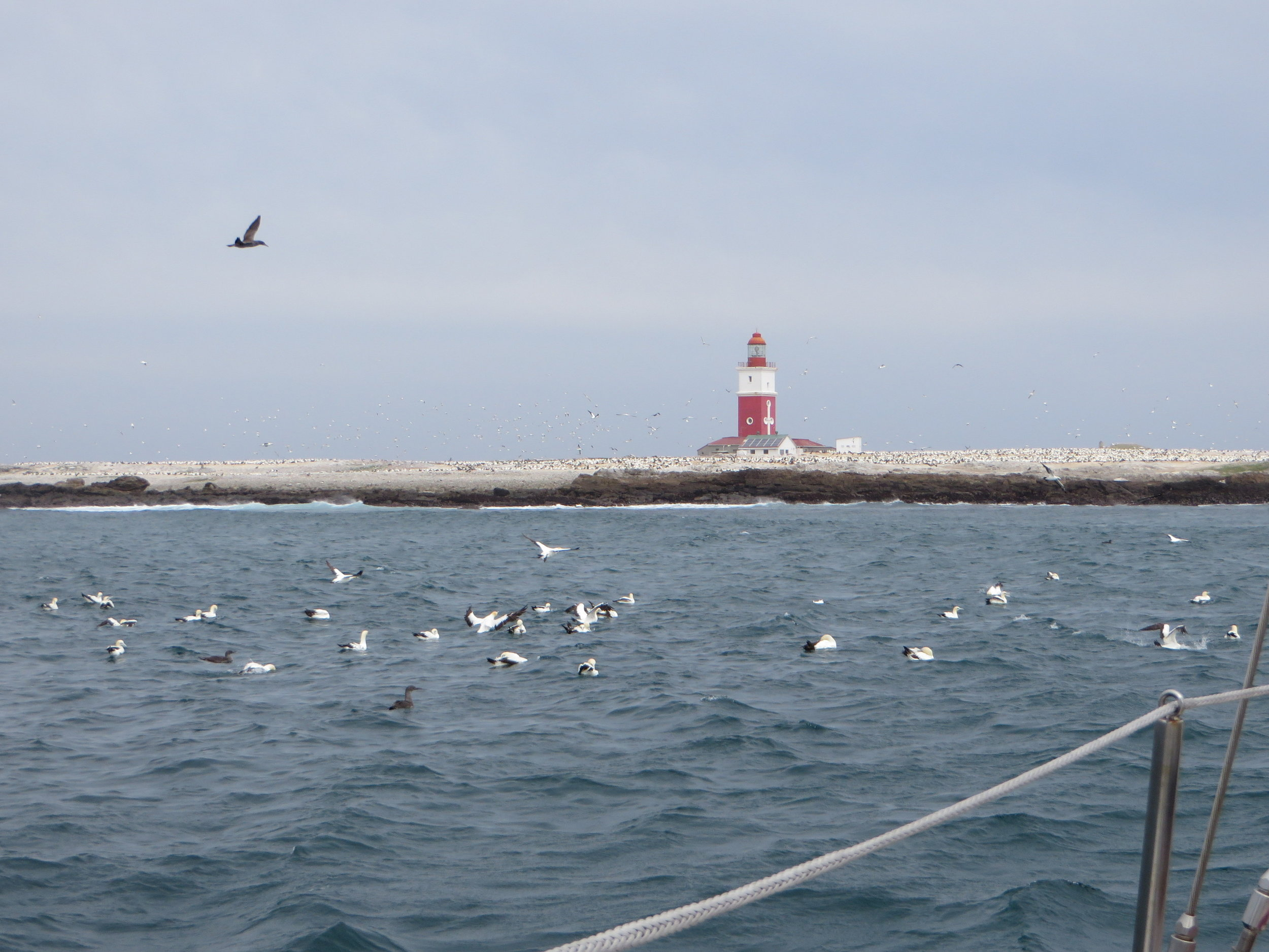 Another weather window had us anchored off Port Elizabeth at  Bird Island . What a view!