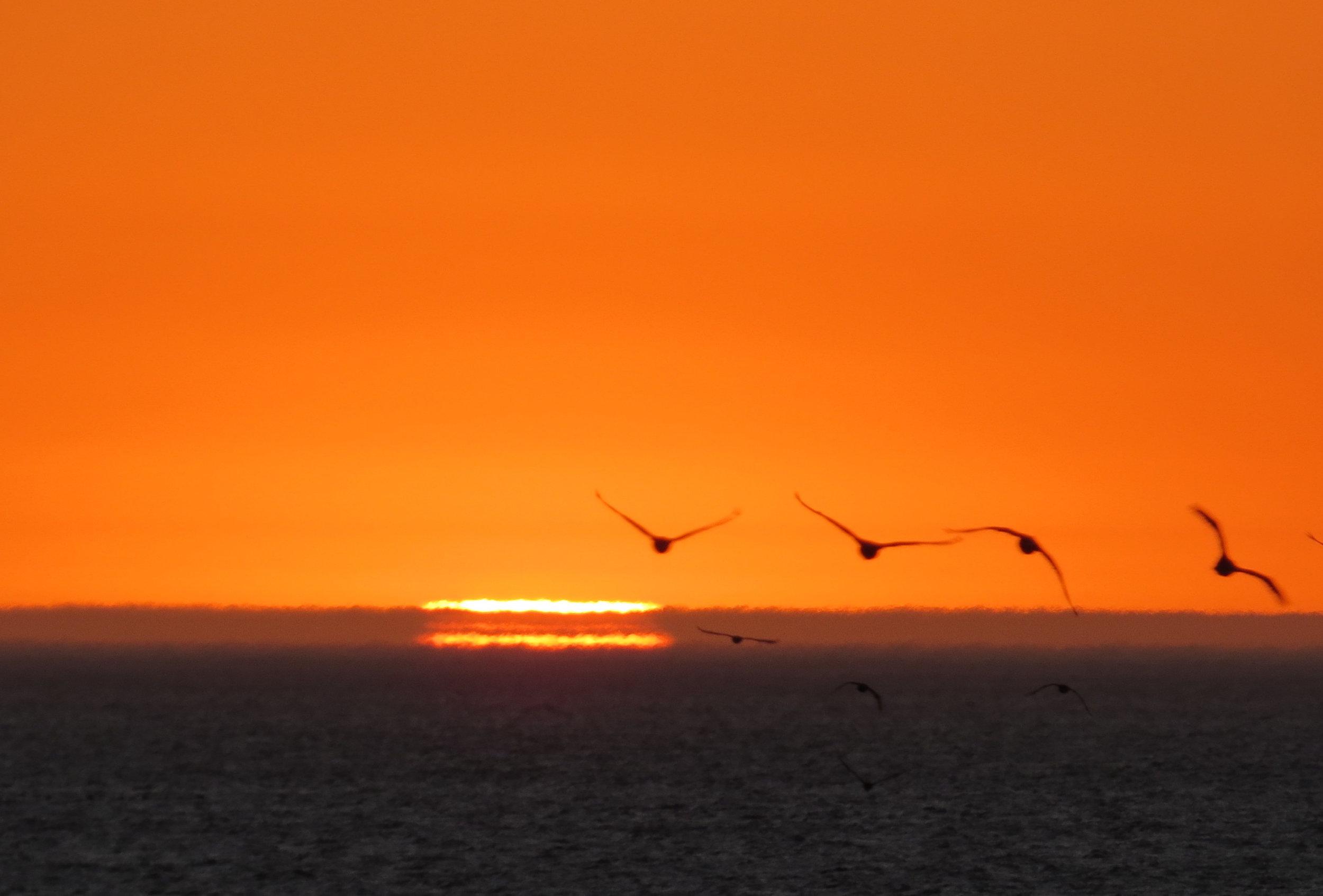 Sunset St. Helena Bay
