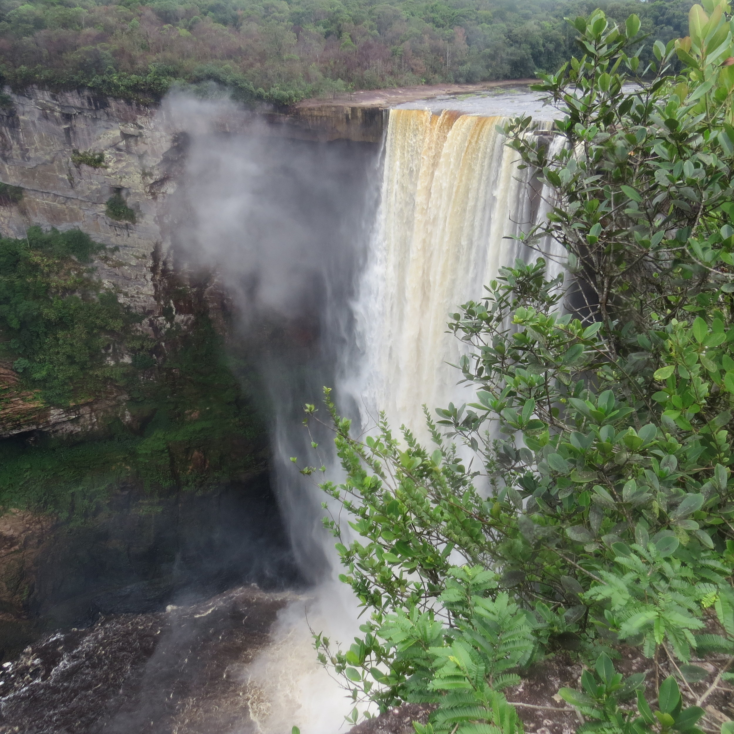 Kaiteur National Park, Guayana