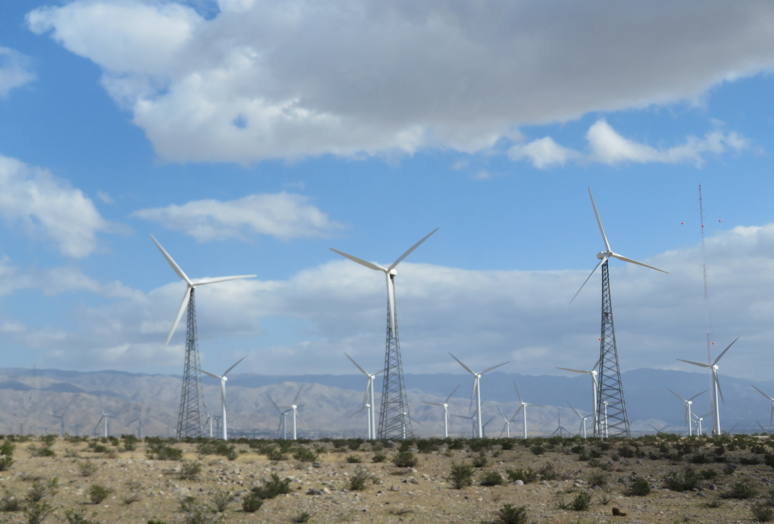 Wind turbines as far as the eye can see