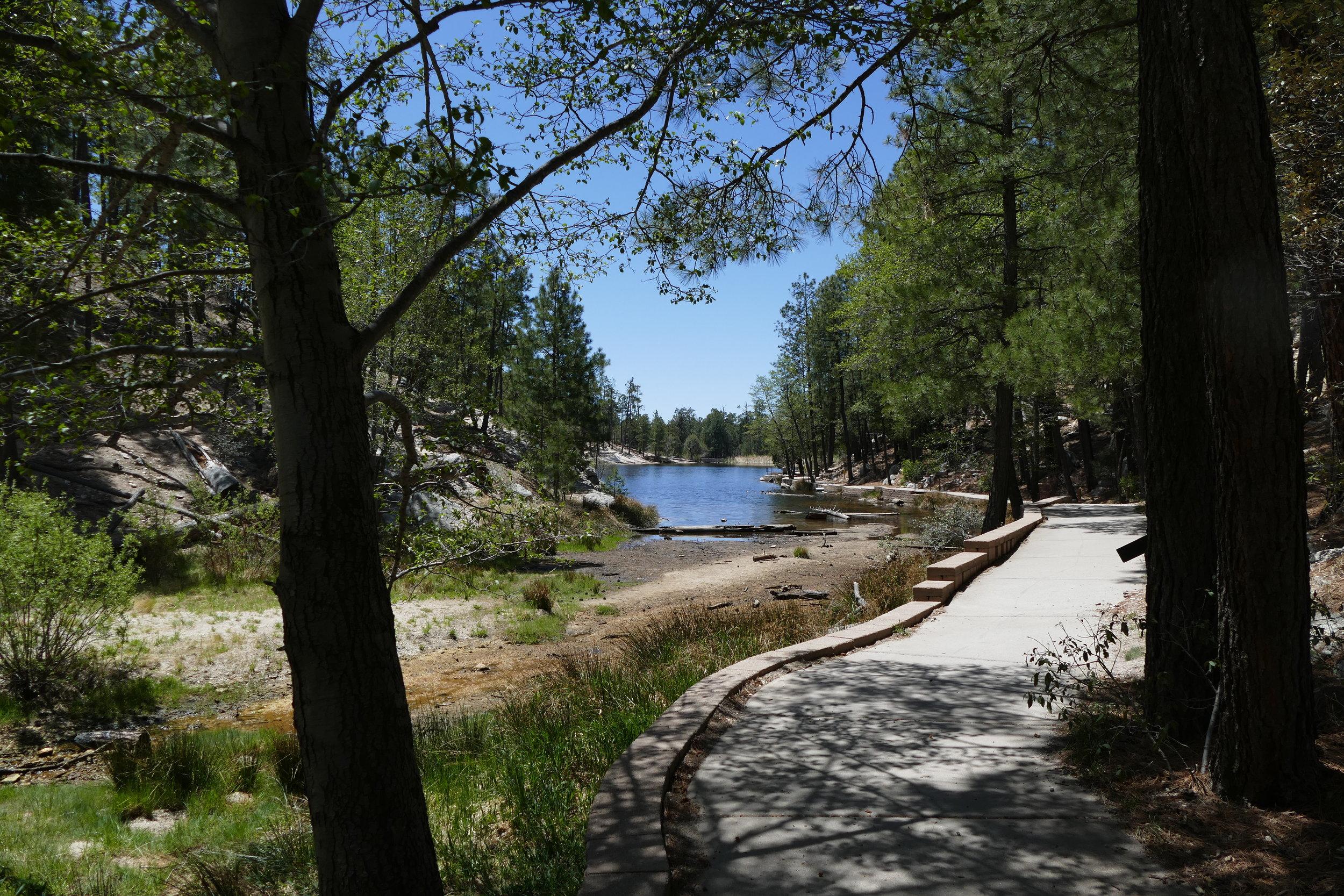 Rose Canyon Lake walk