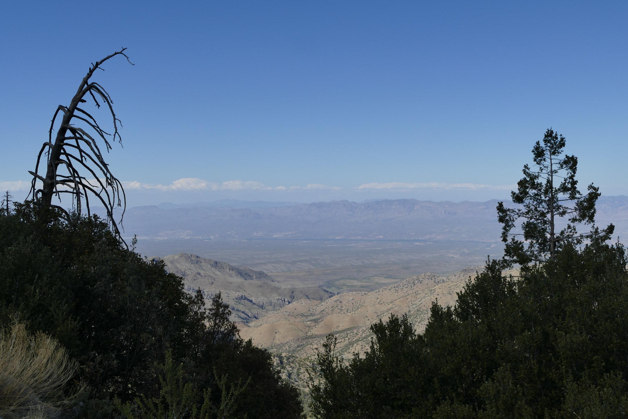 Mount Lemmon scenic vista