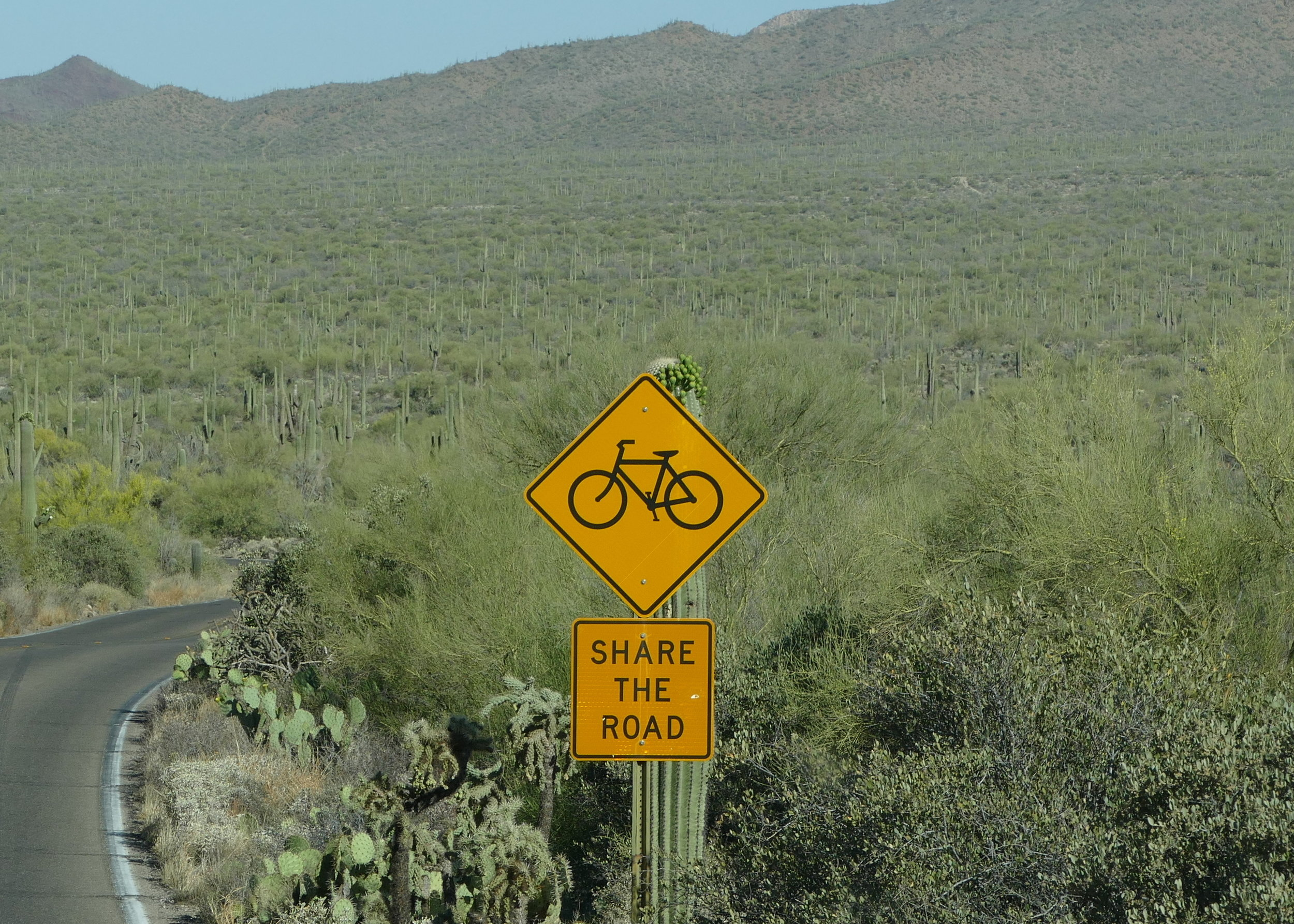 tucson-bike sign.JPG
