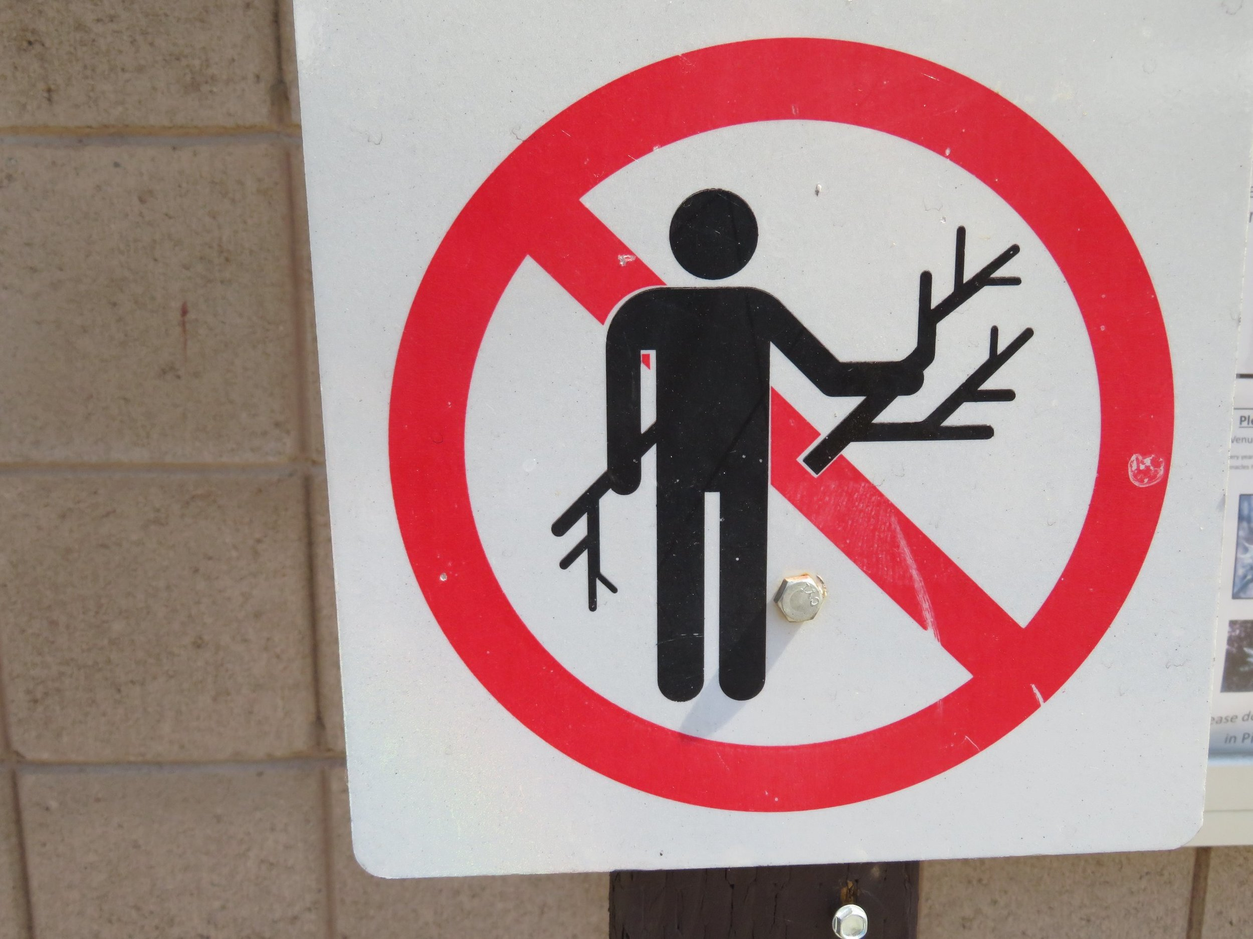 Wood gathering prohibited ... Wool-gathering okay!