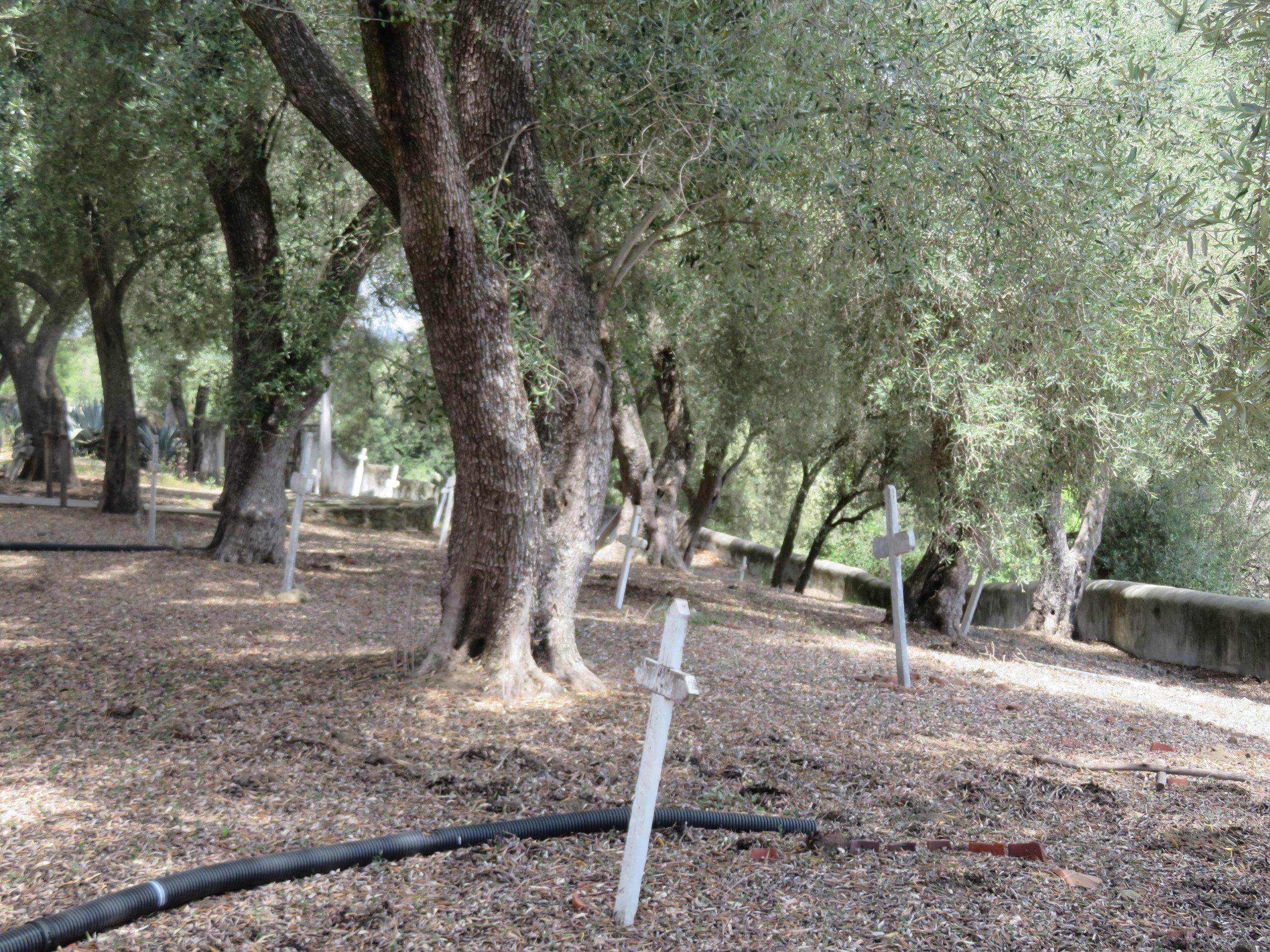 Cemetery at San Juan Batista
