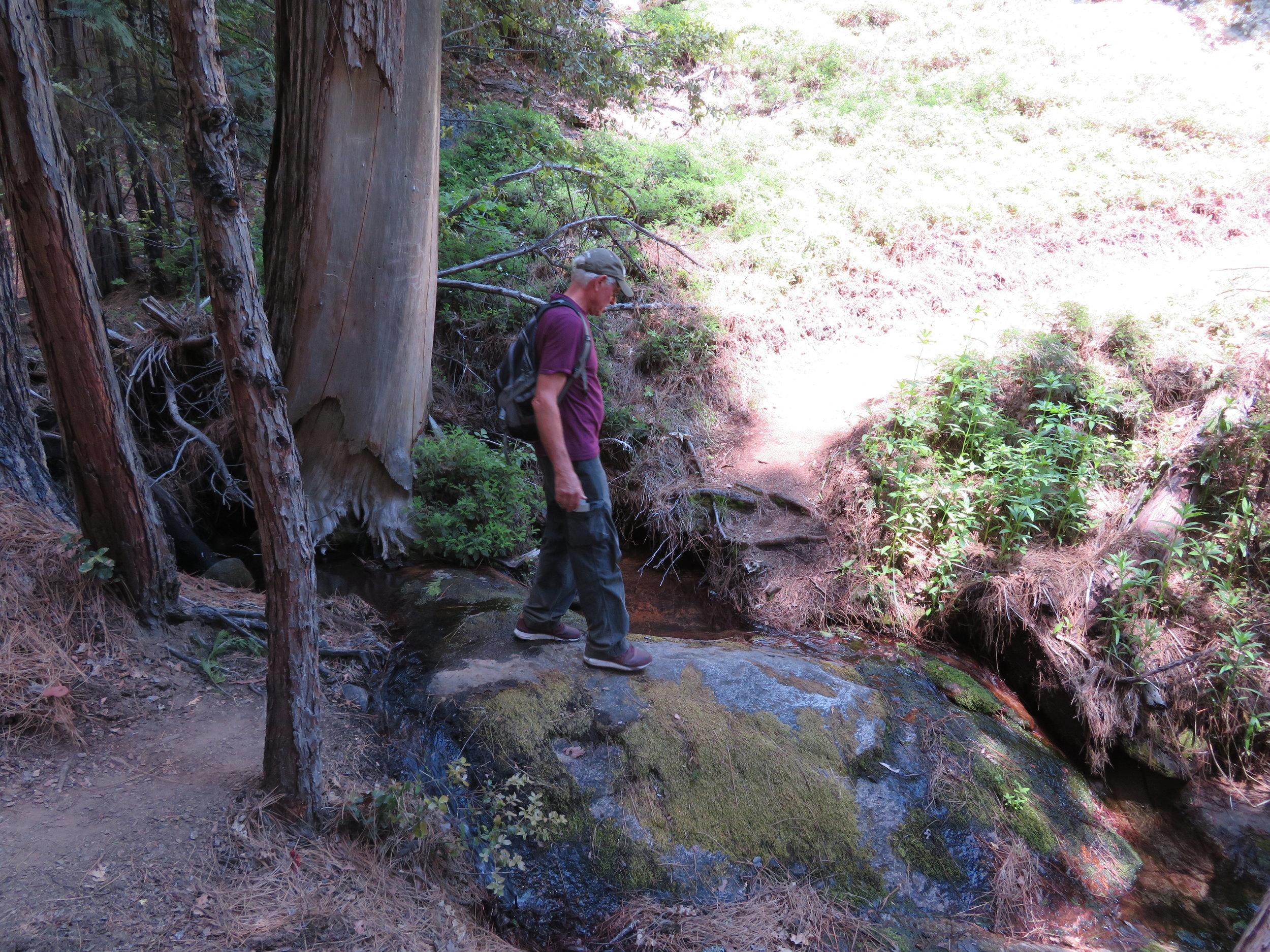 lavabluffs_crossing streams.JPG