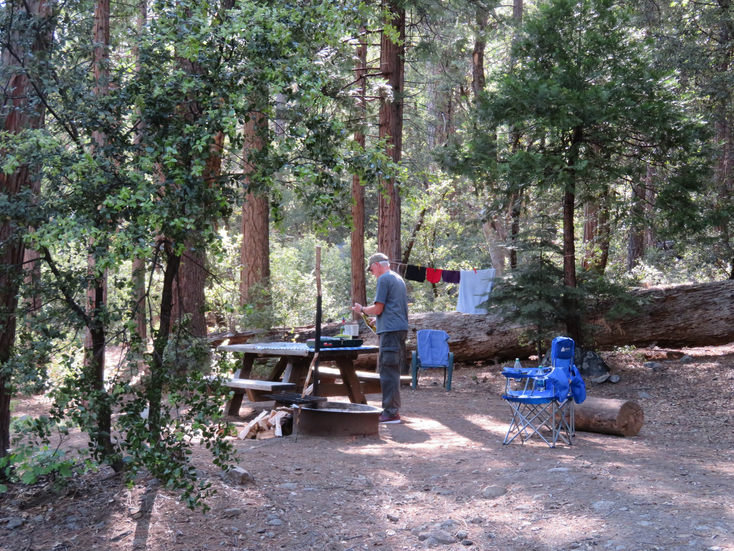 Nice campground ... woodsy and serene.