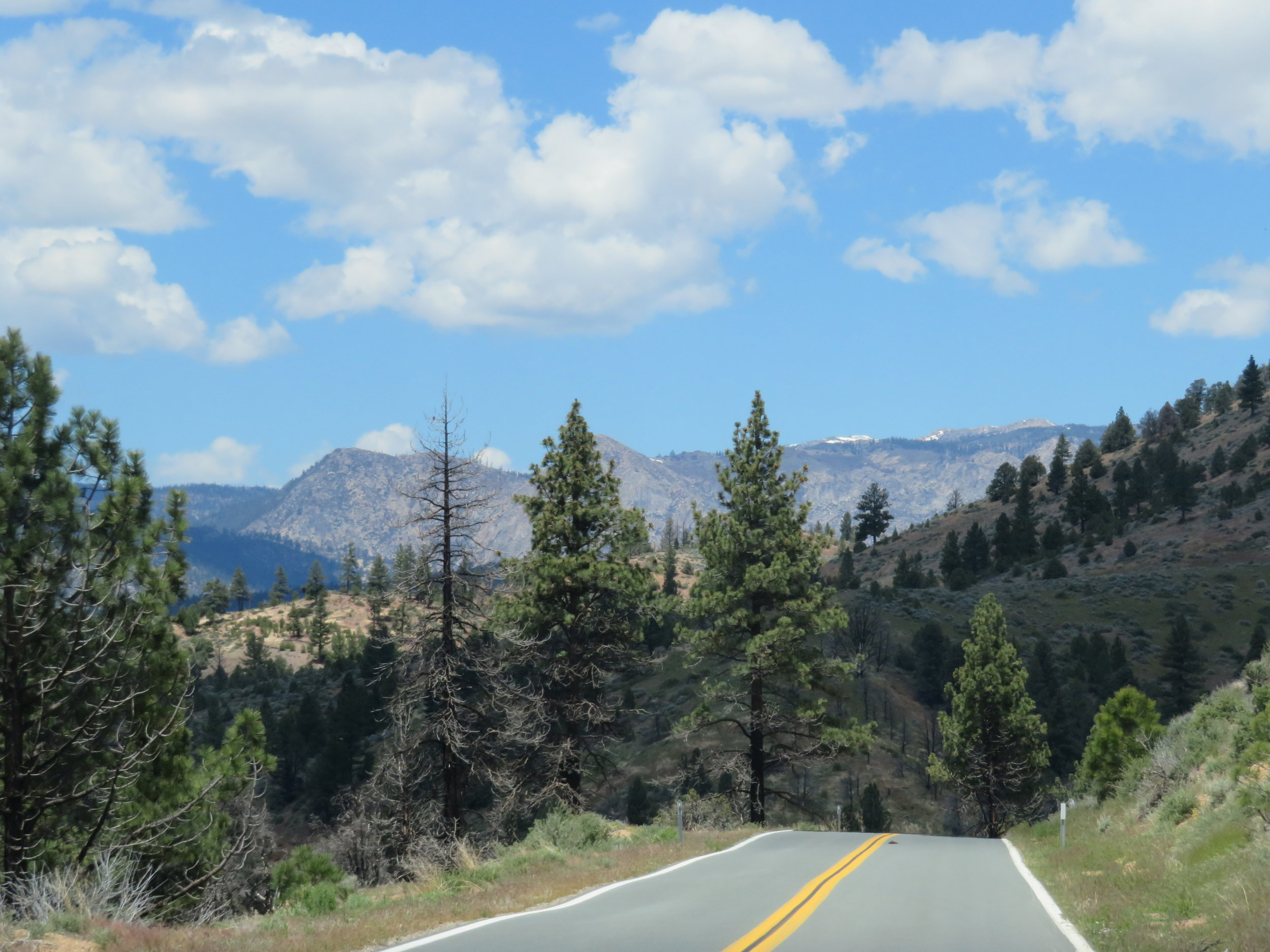 Scenic CA-4 heading over the Sierra Nevadas