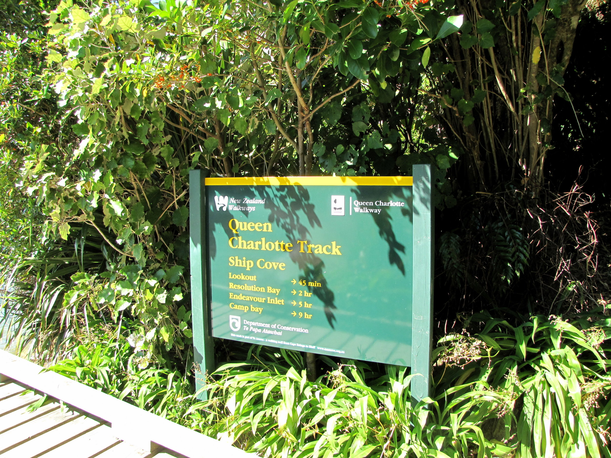 The Queen Charlotte Track in New Zealand