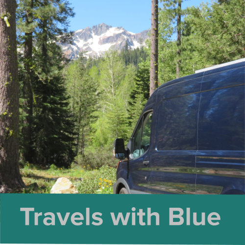 Travels w Blue Thumbnail Lg.jpg