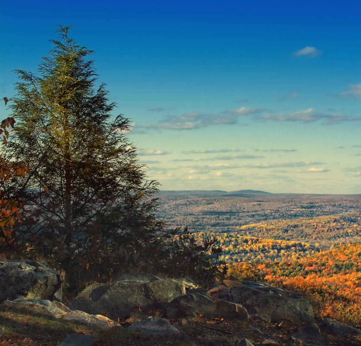 A view from the Appalachian Trail