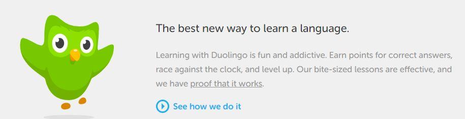 Duolingo_logo.jpg