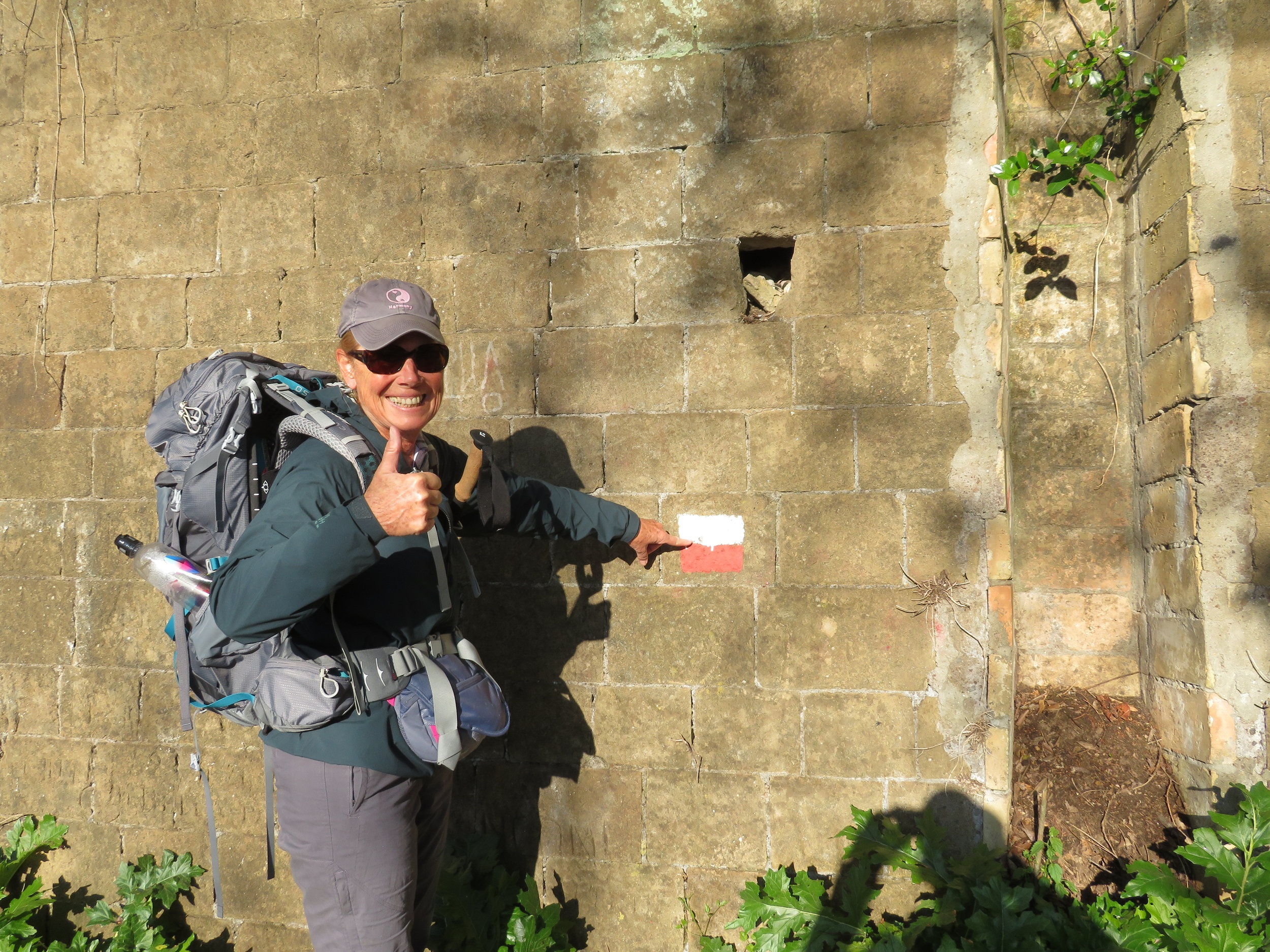 We were elated to spot our first Via Francigena trail marker.