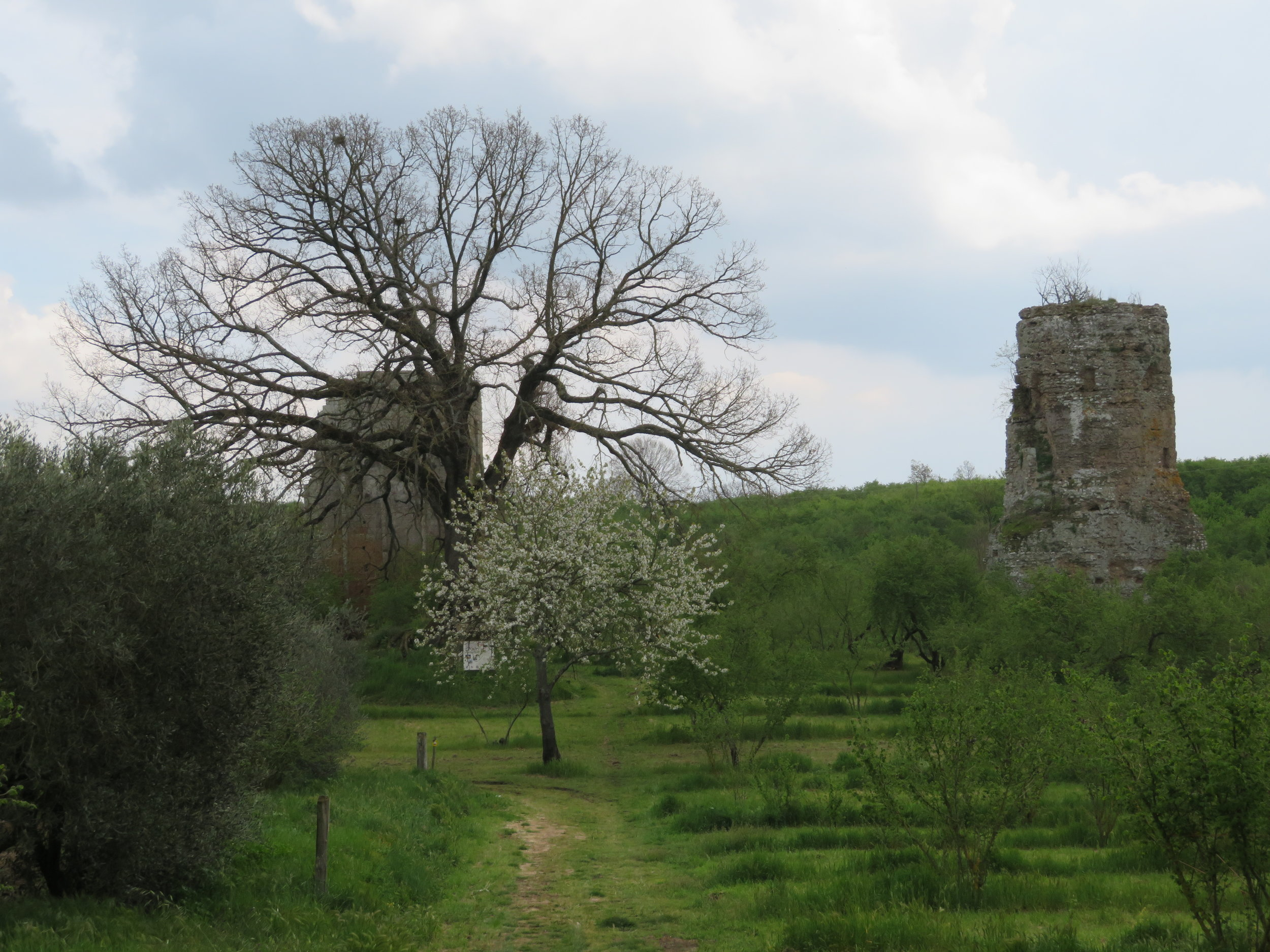 We passed funerary towers dated 1AD in the middle of a hazelnut grove. 1 AD! A tower that's stood in the same place for over 2000 years.