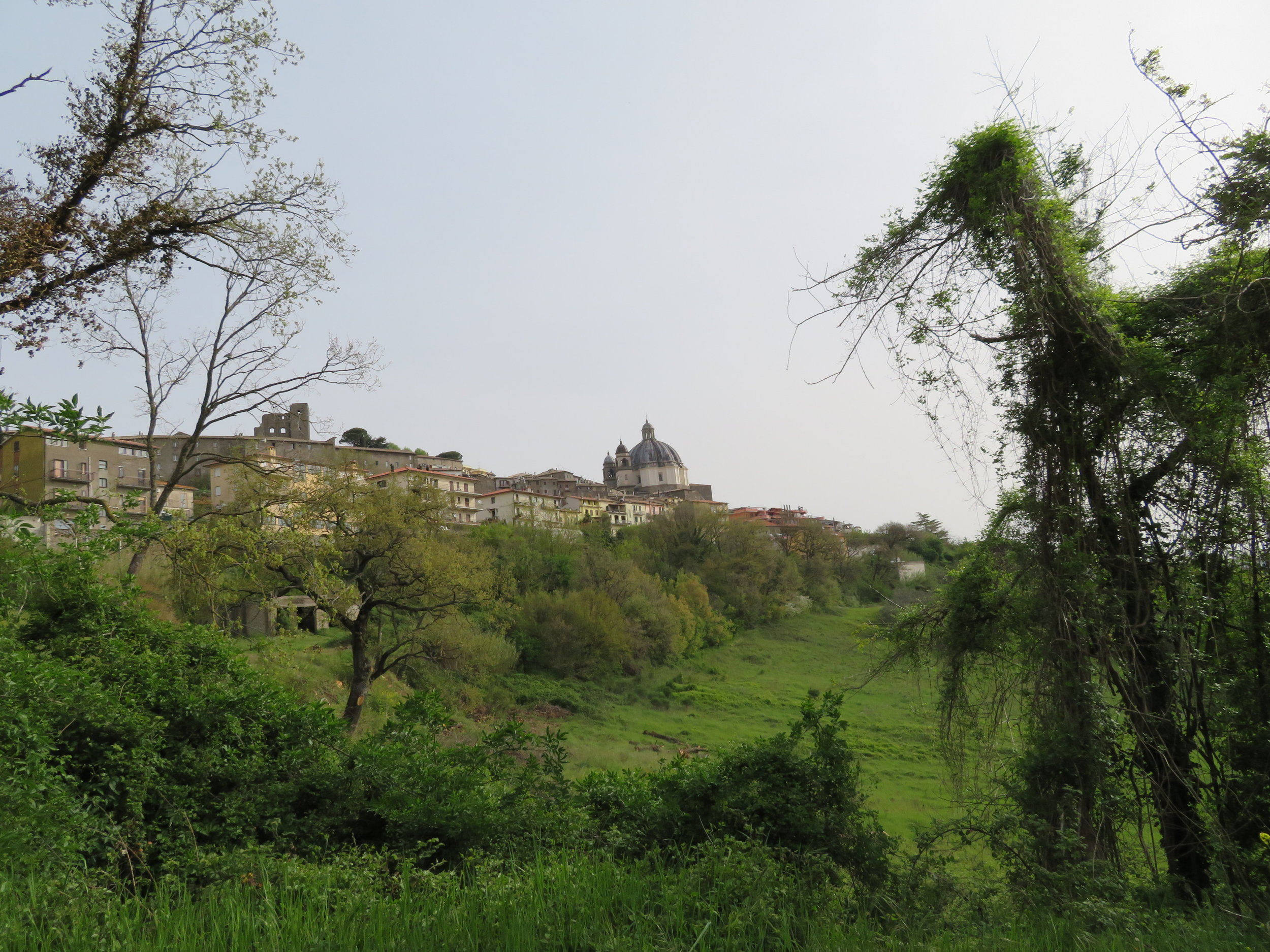 Then it was down, down, down… hard on the knees… beyond the city walls to the path leading to Viterbo. For miles, looking back, we could still see the skyline of Montefiascone and the dome of Rocca di papi.