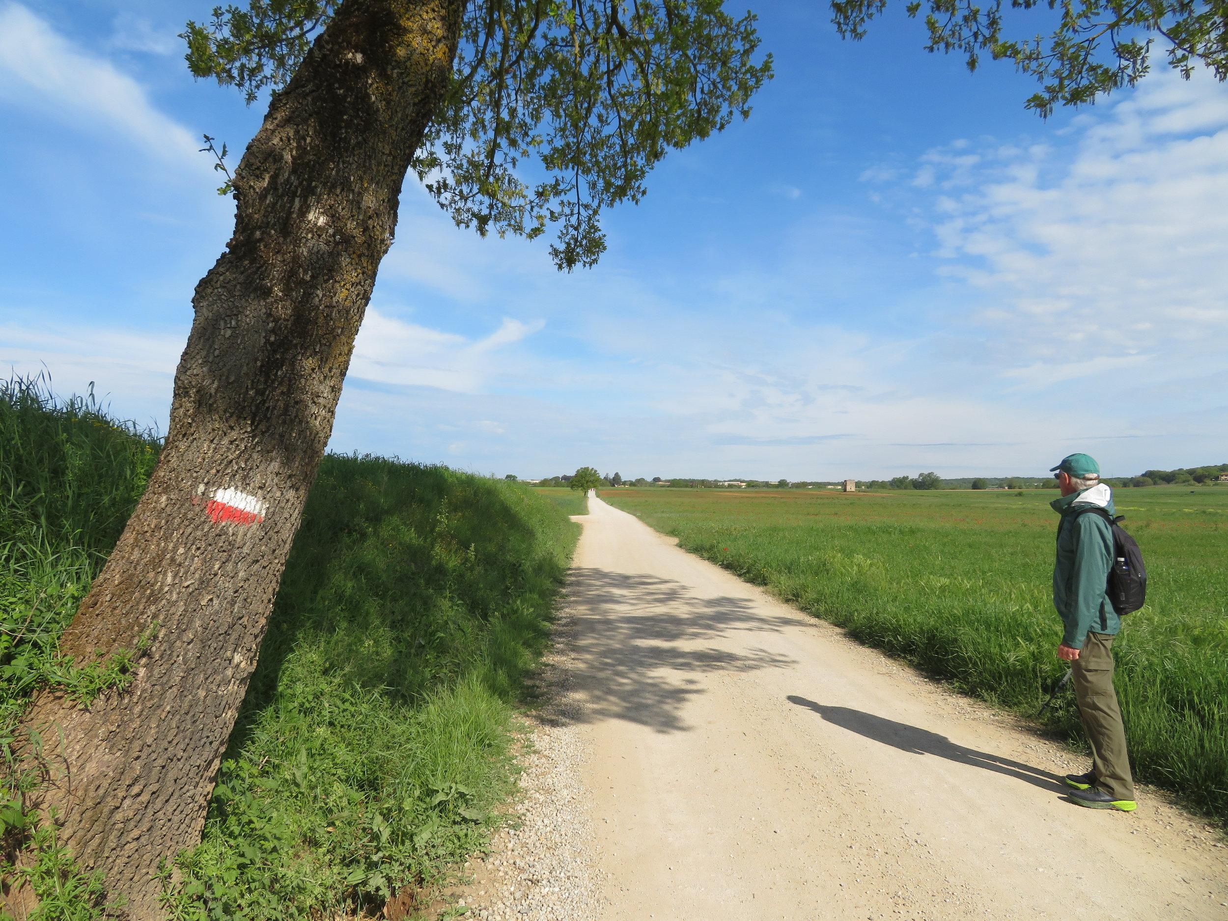 day15-gravel road.JPG