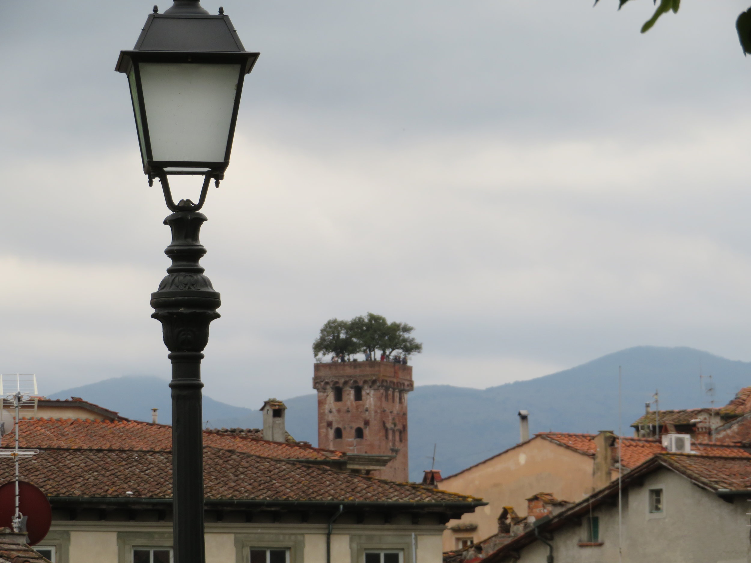 Taken from the wall, the  Guinigi Tower  with its famed rooftop garden dominates the center of the photo with mountains in the background.