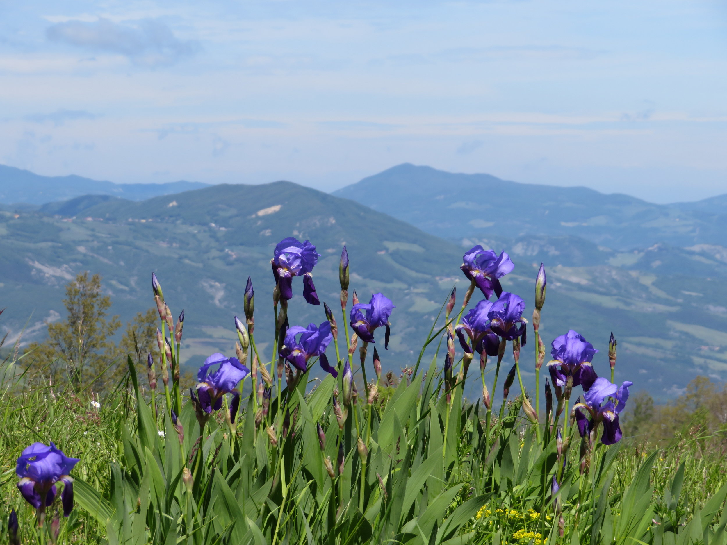 Walking from La Cisa to Cassio in the Tuscan Apennines