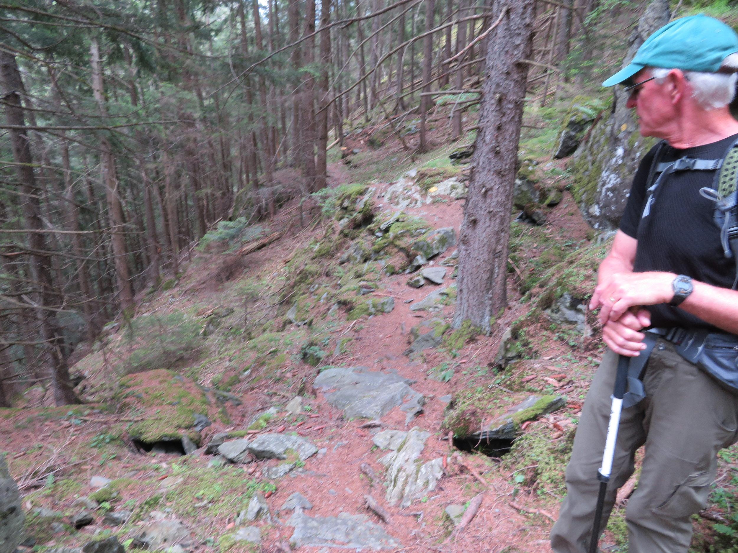 Liddes-Bovernier_tough trail.JPG