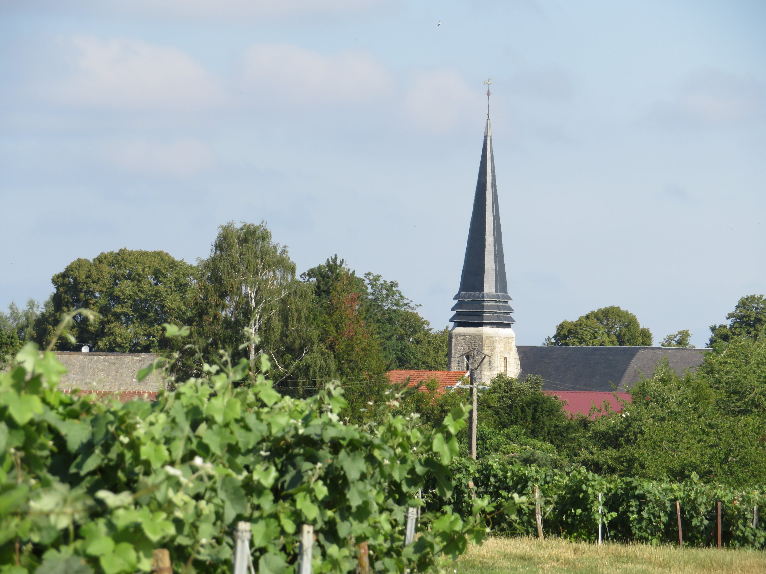 Today's path led us through vineyards, fields and small villages.