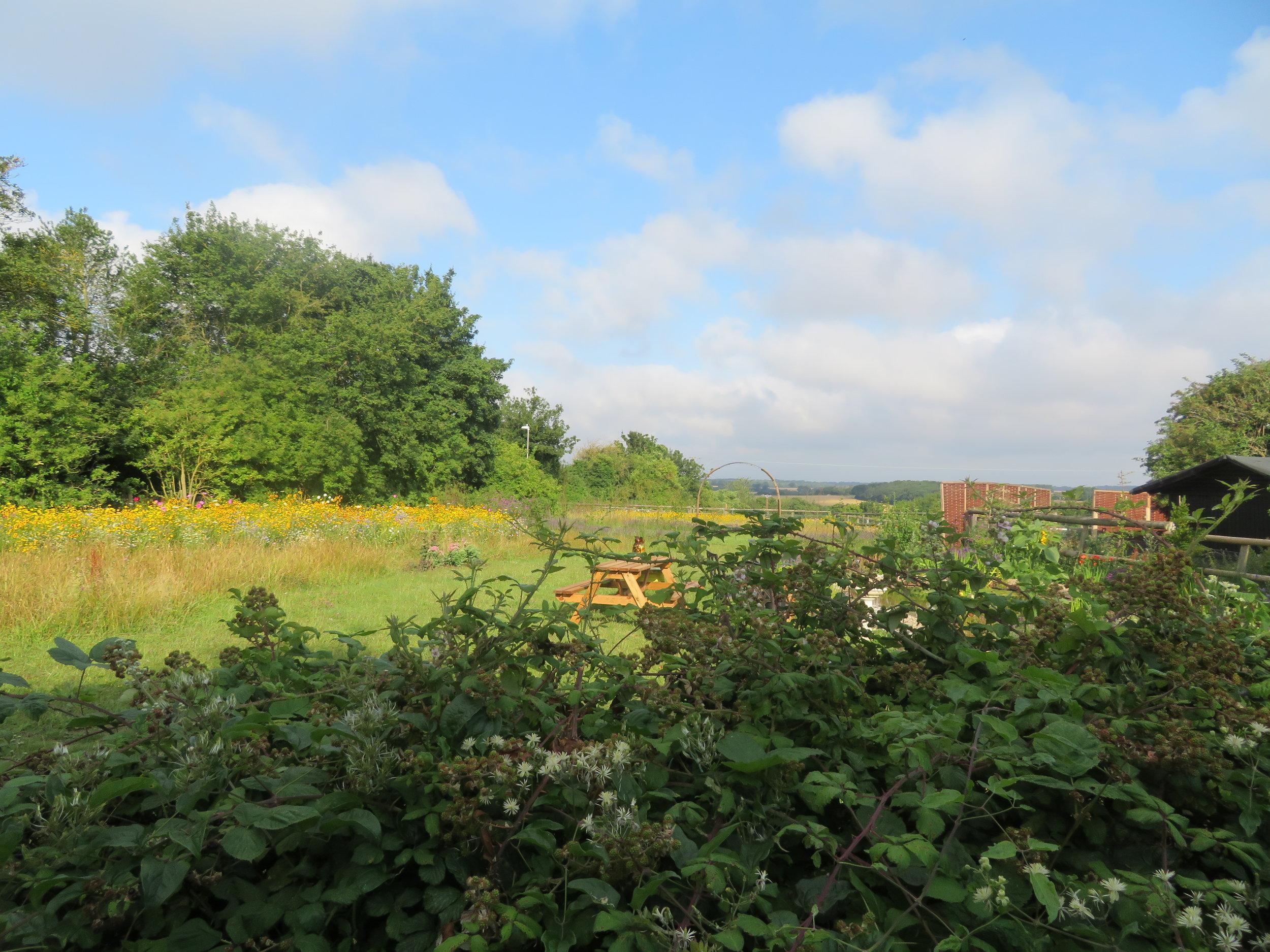 Beautiful English countryside